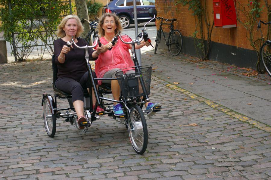 Billedet Parallelcykel til 2 personer