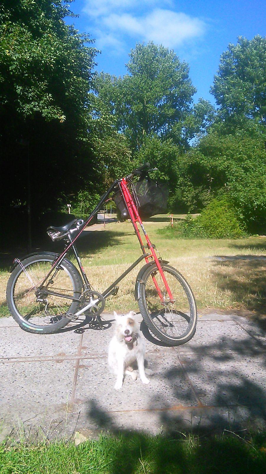 Billedet Mr.Pedersen cyklen og Balder
