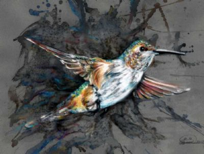 The emerge of the humming bird