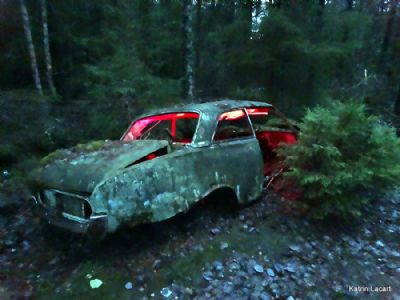 The forgotten gangster car in the forest