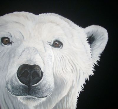 peter the polar bear