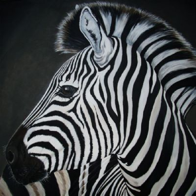 zara the zebra